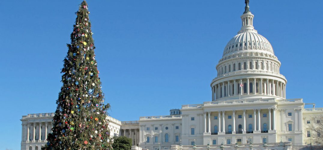Christmas tree outside of Capitol Building