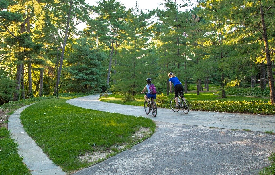 Two people riding bikes down a winding path surrounded by green grass and trees