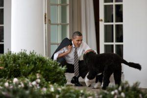 President Obama with his dog, Bo