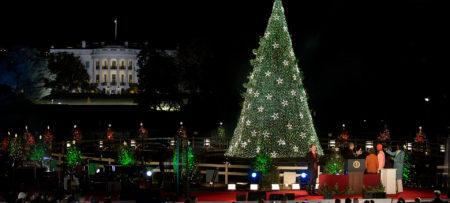 celebrating the holidays in washington dc - Washington Dc Christmas Tree