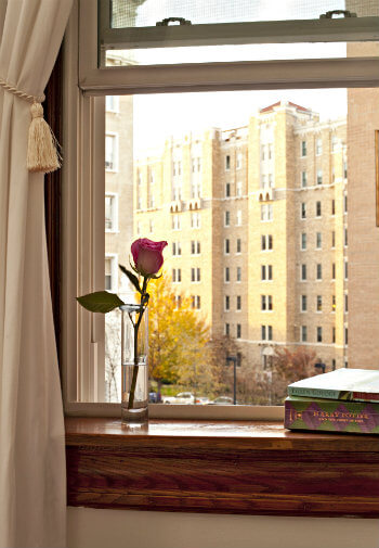 View of window with rose in vase and books on ledge